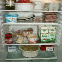 c807f11f42173d68c0689360579f1c66_fridge